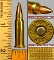 .256 Winchester Magnum, 25 cartridge package, 1/2 box, P/L.