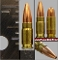 .224 Montgomery Wildcat, One Cartridge, Collectible!