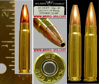 .300 HAM'R by Wilson Combat, J.H.P., One Cartridge not a Box!