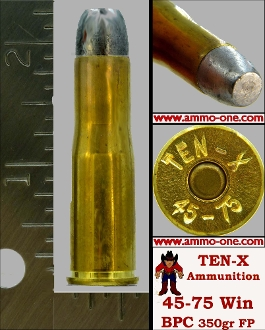.45-75 Win Ten-X H/S, 1 Cartridge not a Box, LIMIT1 !