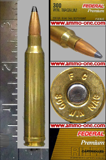 .300 Winchester Mag. By Federal, 200gr.JSP 1 Cartridge not a Box