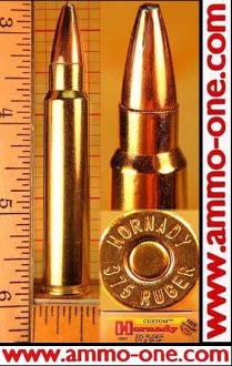 .375 Ruger by Hornady, 270 gr. JSP, One Cartridge , Not a Box.